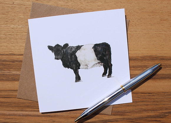 Belted Galloway Greetings Card