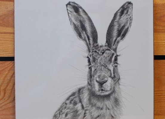 4 x Hare Placemats