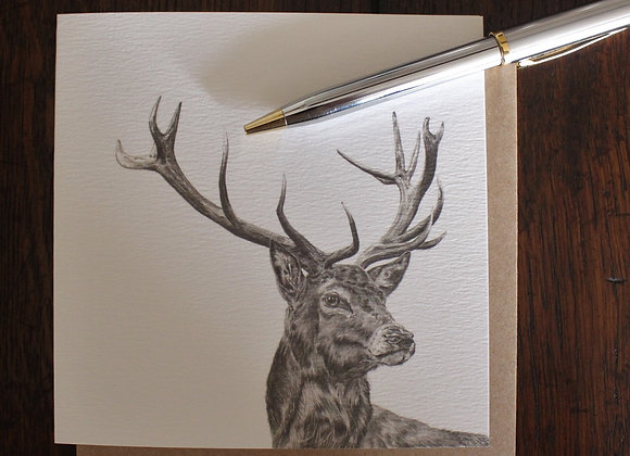 Exmoor Stag Drawing Greetings Card (Trade)