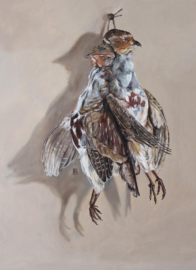 Hanging Brace of Partridge