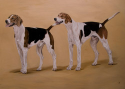 COUPLE OF HOUNDS