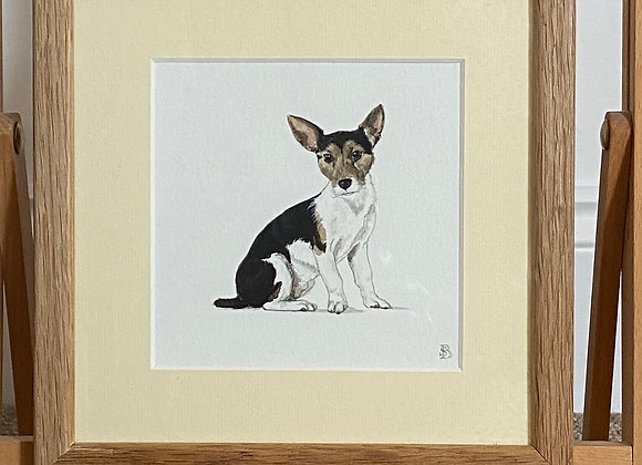 Original Jack Russell Framed Watercolour