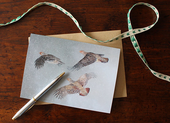 English Partridge Christmas Card (Trade)