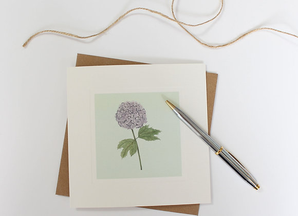 Hydrangea Greetings Card