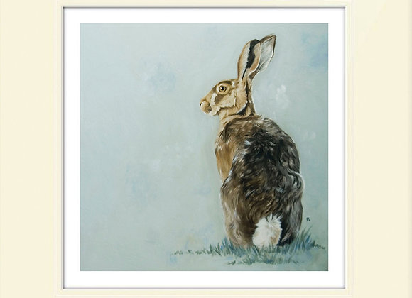 Cotton Tail Brown Hare