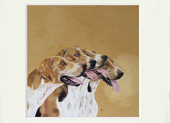 Hour Foxhounds
