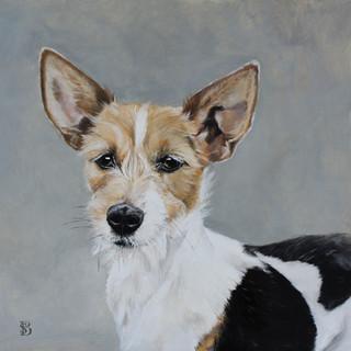 Portrait of Pixie