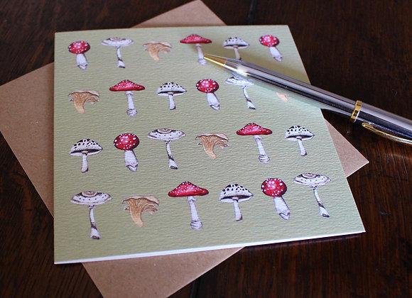 Wild Mushrooms Greetings Card (Trade)