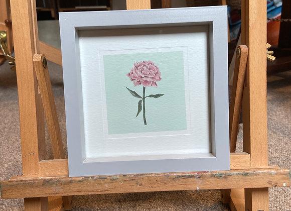 Framed Peony Print