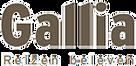 logo_gallia_reizen_beleven.png