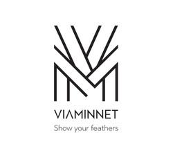 VIAMINNET_logo2017 (1)-7