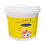 LuminX cover2.jpeg