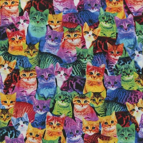 PREORDER Rainbow Cat Print Mask