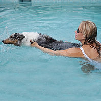 suzanna-w-dog-swim-01.jpg