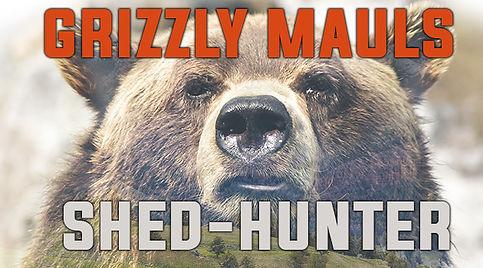 BLOG_ARTWORK_GrizzlyMaulsShed-Hunter.jpg