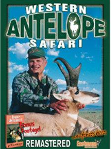 Western Antelope Safari
