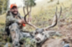 2018 Scott Reekers WY mule deer 1_EDITED
