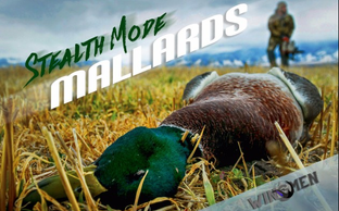 Stealth Mode Mallards – Late Season Green