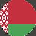 belarus flag.png
