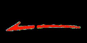 LogoTopSolidWood-lpr (1).png