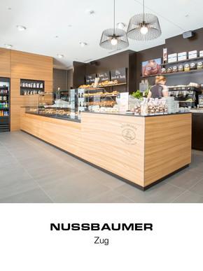 Projektvorschau-Barmade-Nussbaumer-Zug.jpg