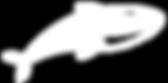 Лого-кас-бел.png