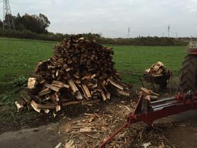 薪が集まってきています。