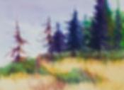 northern sentinals 10 x 14 acrylic.jpg