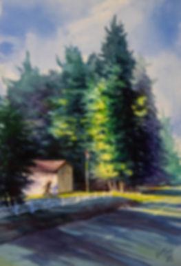Sunlight in the Smokies_DSC3502 copy.jpg