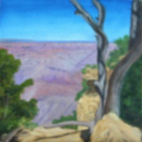 dave sapp grand canyon.jpg