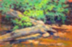 smith nature park-pastel-dsc_8516.jpg