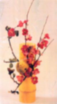 jp010 (1).jpg