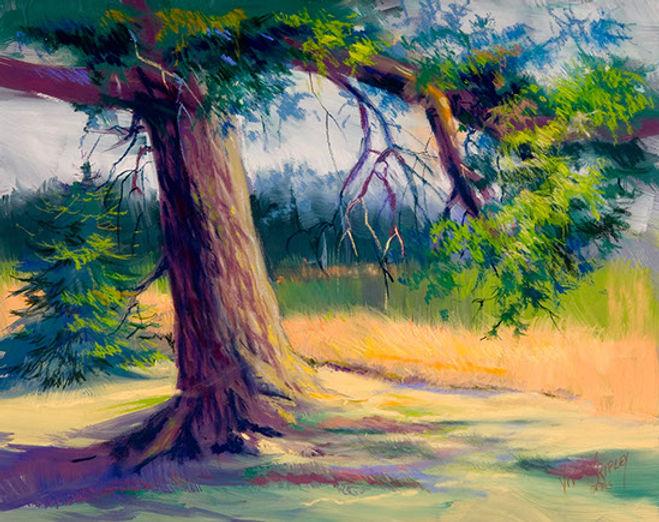ripleyv_the old oak-pastel-_16 x 20_past