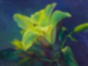 lily-acrylic-20090929-dsc_0284.jpg