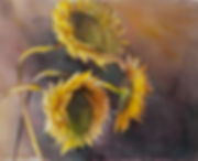 sunflowers-watercolor-DSC_7753.jpg