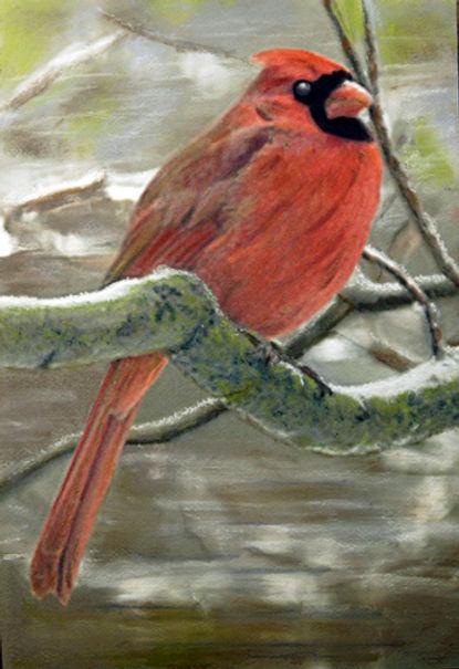 Ohio cardinal-sml.jpg