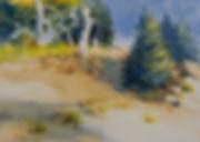 NORTHWEST  TRAIL  Watercolor.jpg