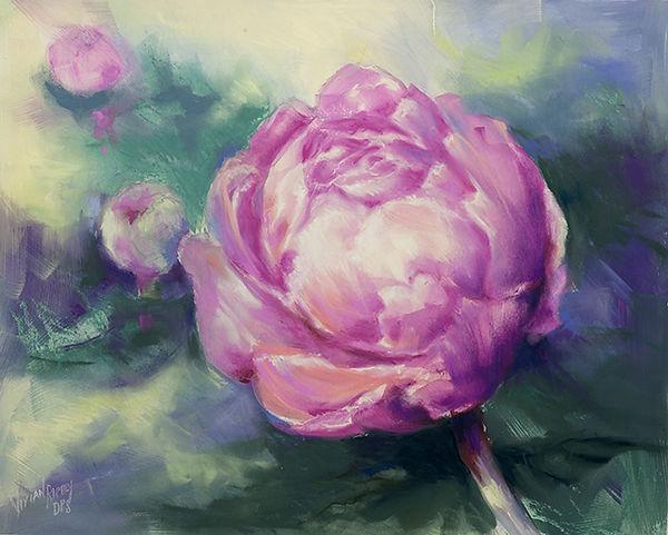 peony-pink-pastel-DSC_7759-sml.jpg