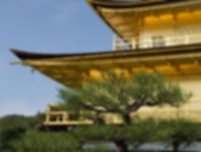DSC_6417-Japan-2006-2.jpg