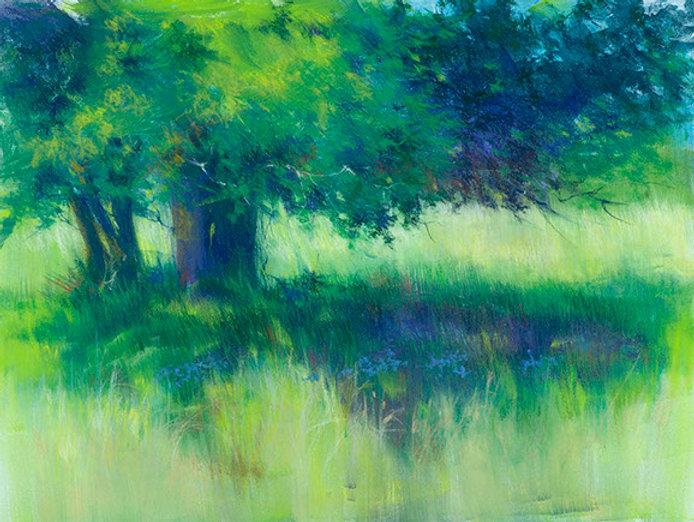 manatoulin field-pastel-_dsc4878.jpg