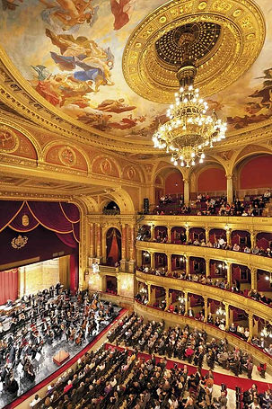 Opera VIENA 2.jpg