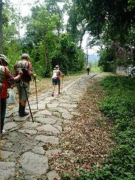 Peregrinação a pé  Rio -  Aparecida