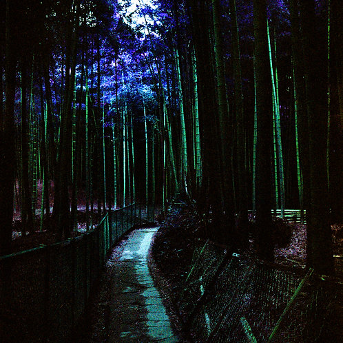 Street Scene Series: Bamboo Forest (paper print)
