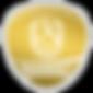 Logo Handball.png