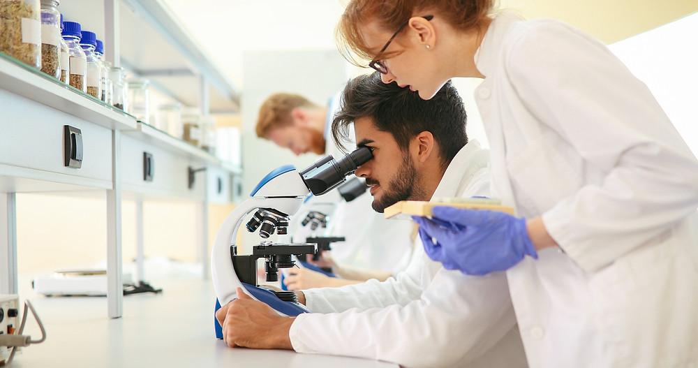 autotriz nano coating scientist microscope