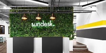 Sundesk-5_edited.jpg