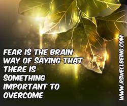 fear is the brain way