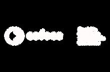 cofece-logo.png