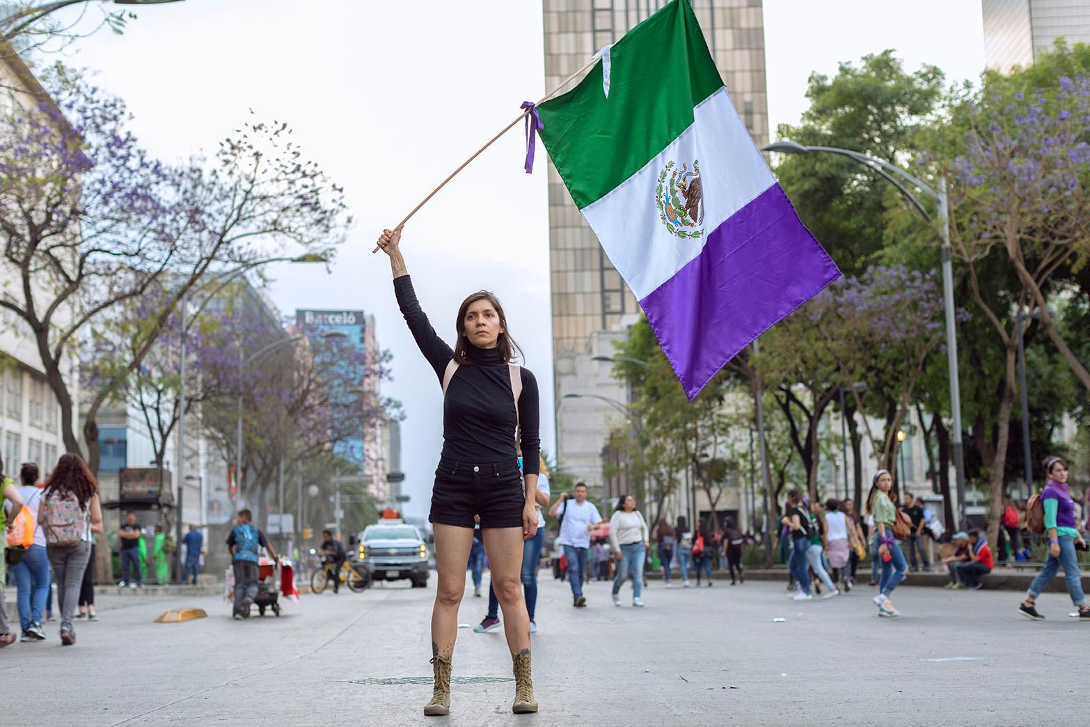 Bandera de la Revolución, Mexicana