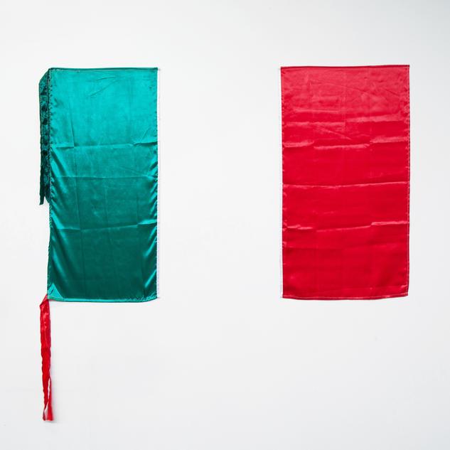 Bandera de México #10